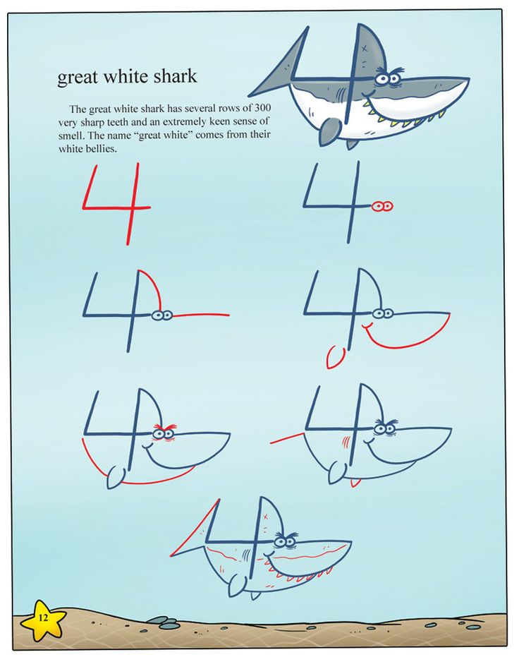 Drawing Sea Animals With Numbers | Shop Harptoons