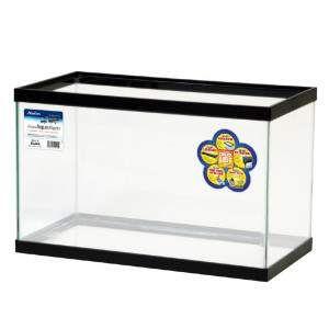 Glass Aquariums as display cases? - http://ift.tt/2cck1ng