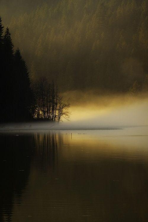Aura dorée dans la brume
