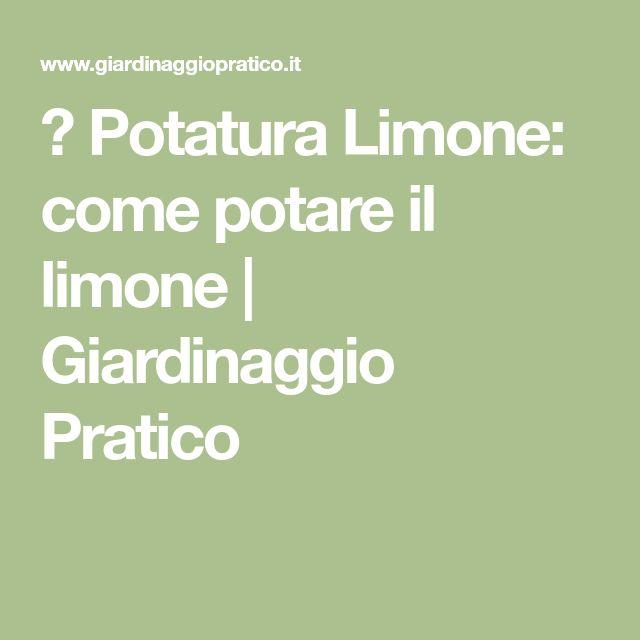 ☼ Potatura Limone: come potare il limone | Giardinaggio Pratico