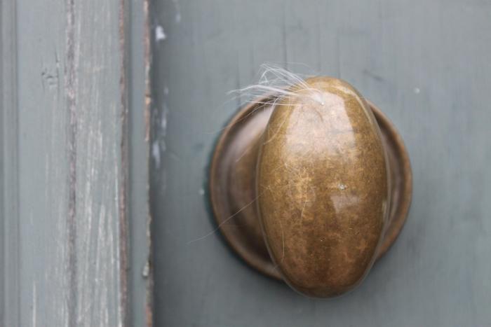 10 Favorites Architectural Hardware, Baldwin Brass Egg Knob, Remodelista