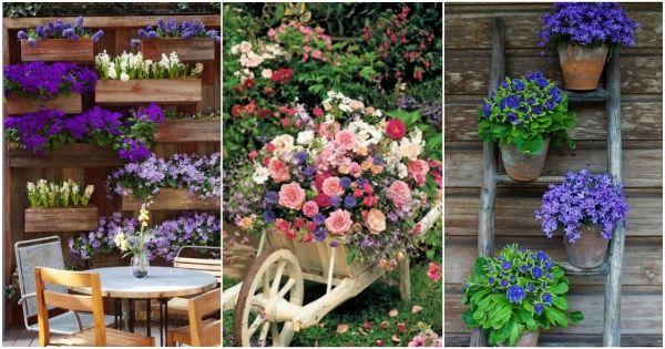 25 best ideas about flores para jardin on pinterest - Plantas de jardin exterior ...