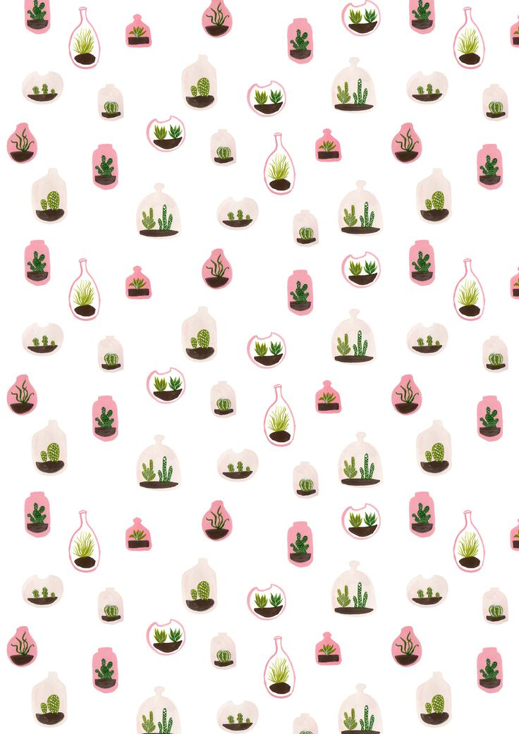 pink terrariums surface pattern design / succulents / cacti / gouache painting