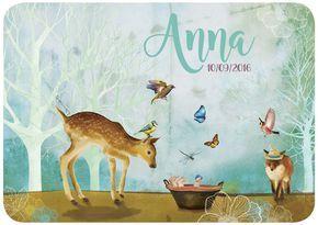 Geboortekaartjes met Bambi, vos, vogels en vlinders in bos. Illustratie dieren  origineel   retro   vintage   babykaartje