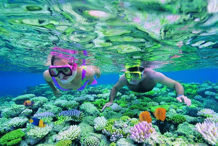 Great Barrier Reef, Australia Great scuba diving