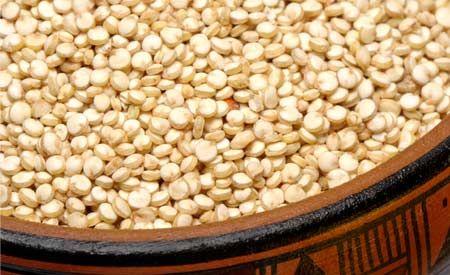 (Zentrum der Gesundheit) - Quinoa ist vielleicht eine der besten pflanzlichen Eiweissquellen auf der Welt. Was Quinoa so einzigartig macht, ist, dass die kleinen Körnchen alle neun essentiellen Aminosäuren enthalten, was für ein pflanzliches Lebensmittel äusserst ungewöhnlich ist. Der Mineralienreichtum von Quinoa schlägt den unserer üblichen Getreidearten um Längen. Ausserdem ist das leckere Inka-Korn glutenfrei und kann daher sowohl bei Getreideunverträglichkeiten als auch bei Problemen…