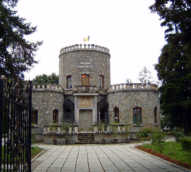 small castle style house | Iulia Hasdeu Castle