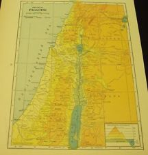 Vintage 1939 Physical Map of Palestine WWII Era 75 Years Old!