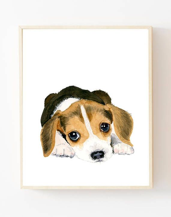 Baby Animal Beagle Puppy This Is A Print Of My Original
