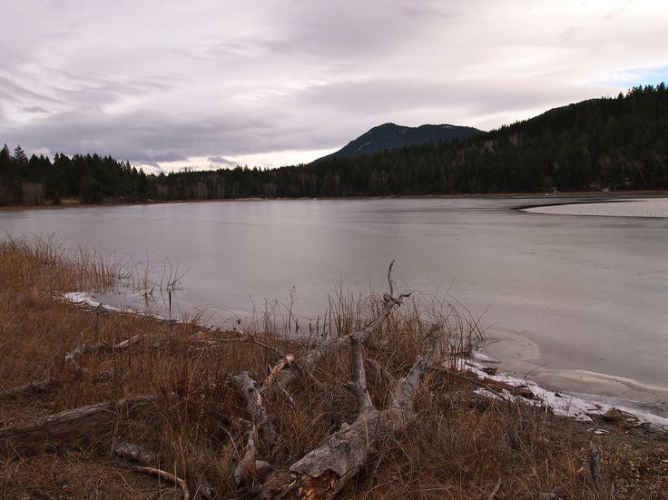 Louis Lake, Kamloops, BC, Kamloops. November 2012