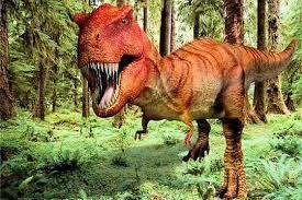 """Résultat de recherche d'images pour """"images de dinosaures"""""""