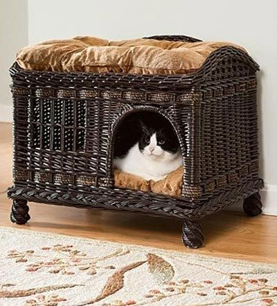 Cat-bed-two-tier-rattan...wish I knew where to get this! I love it.