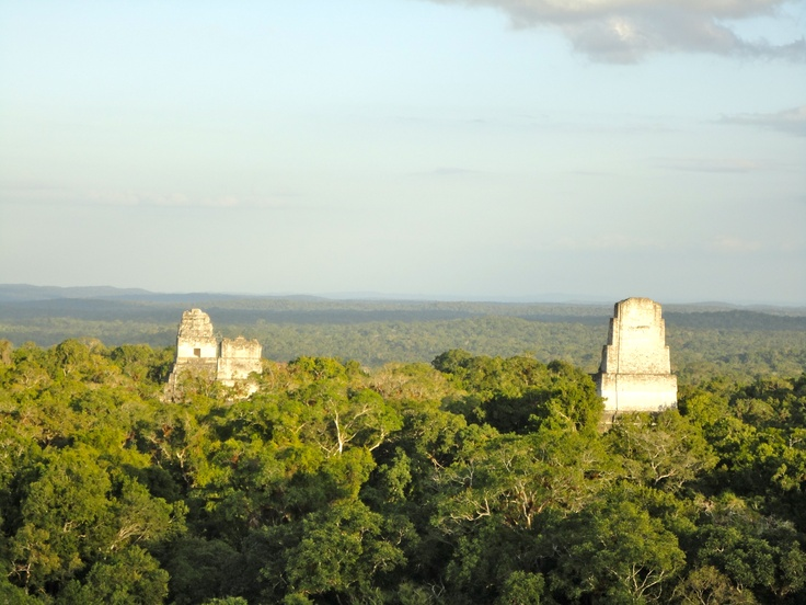 Tikal, Guatemala.  I love history AND the jungle AND archaeology so it was heavennnn.  Visited February 2011.Favorite Places, February 2011, Visit February