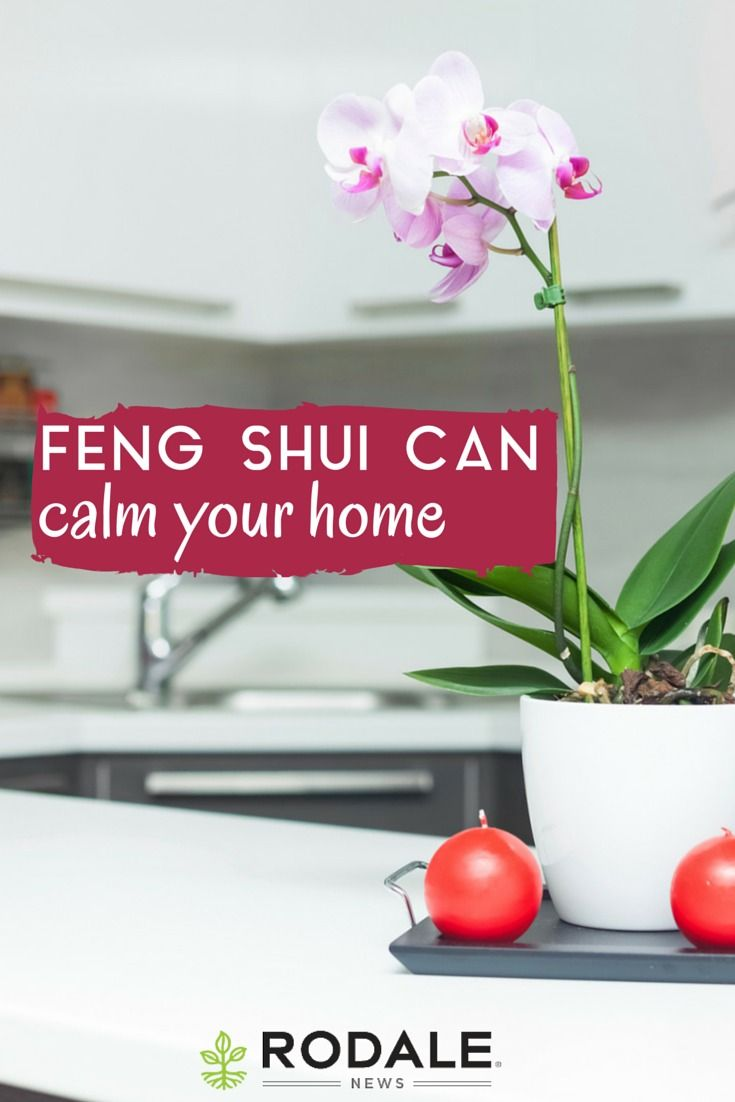8 ways feng shui can help calm your home