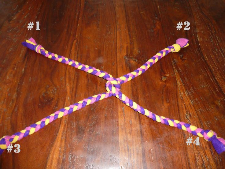 Knick Knack Patty Whack Pet Services: Homemade Fleece Dog Toys