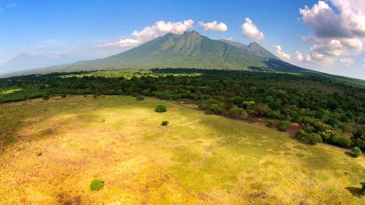 Wonderful Indonesia - Taman Nasional Baluran: Eksotisme Alam Bebas di Timur Pulau Jawa