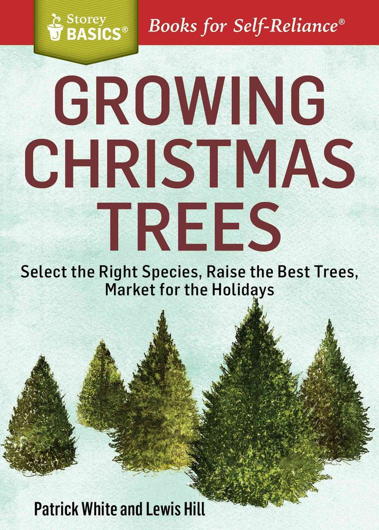Christmas Trees By Robert Frost Part - 43: 86 Best Tree Farm Images On Pinterest | Country Christmas, Primitive  Christmas And Land Art