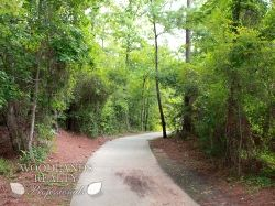 A curve in the natural pavement pathway surrounded by trees - Gallery - Woodlands Realty Pros