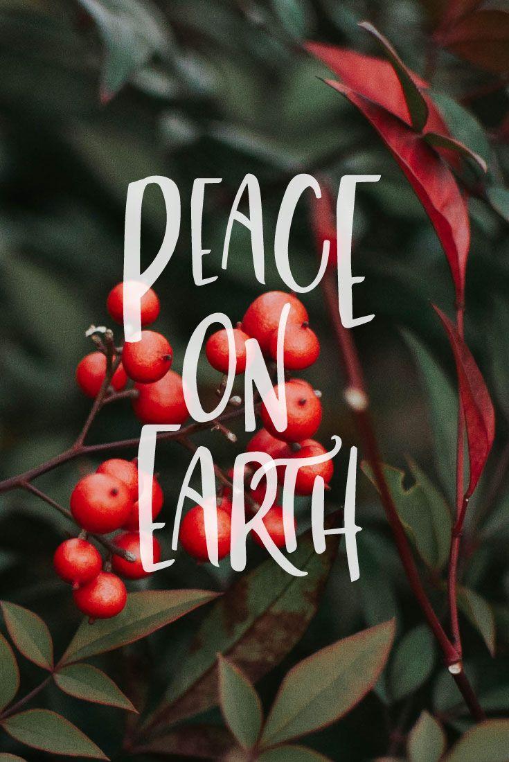 #christmas #christmasquotes #quotes #quoteoftheday #sayings #sayingimages #sayingsandquotes #babyitscoldoutside #cozy #ad #typography #type #typespire #handmadefont #words #merryandbright #merrychristmas #letitsnow #peace #peaceonearth