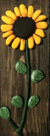 Steinsonnenblume