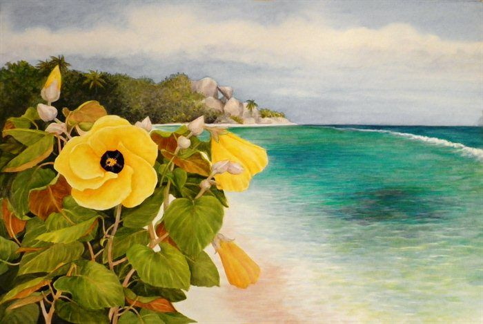 Beach Hibiscus, LaDigue by Janet Summers