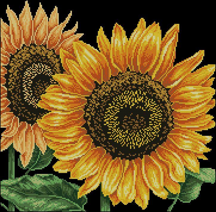 """Сачать схему вышивки """"Sunflowers"""""""