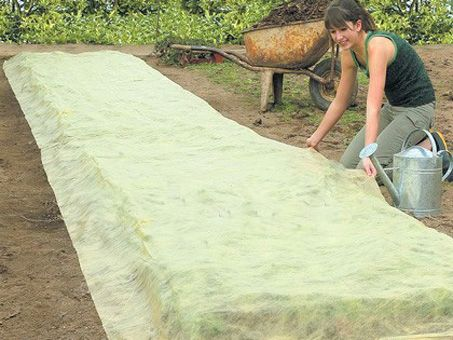 Bio-Gartenvlies L10x B1,50m, fördert Wachstum und sorgt für schnellere Ernte, mit 6 Haken