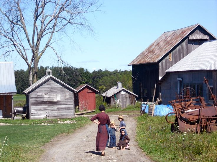 Amish_farm_morristown_new_york.jpg (1024×768)