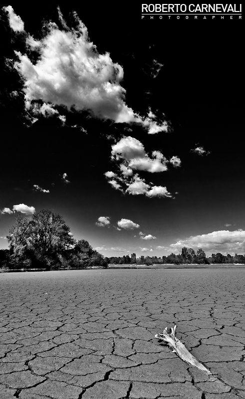 """Italian Desert"" (Deserto italiano)   Italian infrared landscape photography in black and white (Modena, Italy)   Published on VOGUE Italia magazine   © Roberto Carnevali"