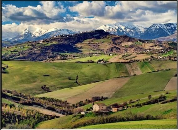 Panorama delle colline marchigiane