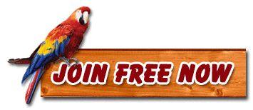 Hot Website Traffic - Free Manual Traffic Exchange