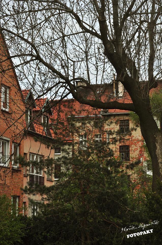 Kusiło mnie żeby zrobić to zdjęcie w czerni i bieli, ale wtedy nie było widać, jak ładnie rumienią się cegły :)  fot. Monika Kasprowiak