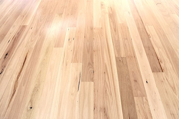 blackbutt flooring - Google Search WANT THIS COLOUR
