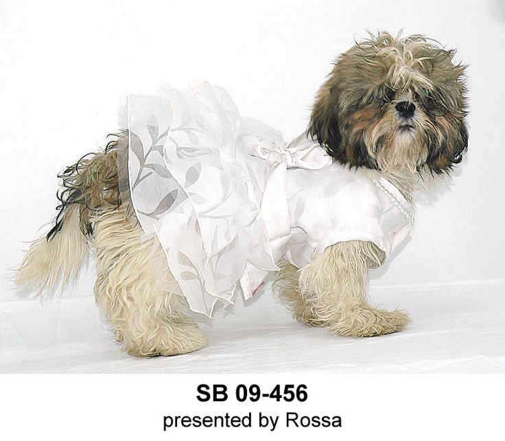9 Best Design Your Own Dog Clothes Images On Pinterest