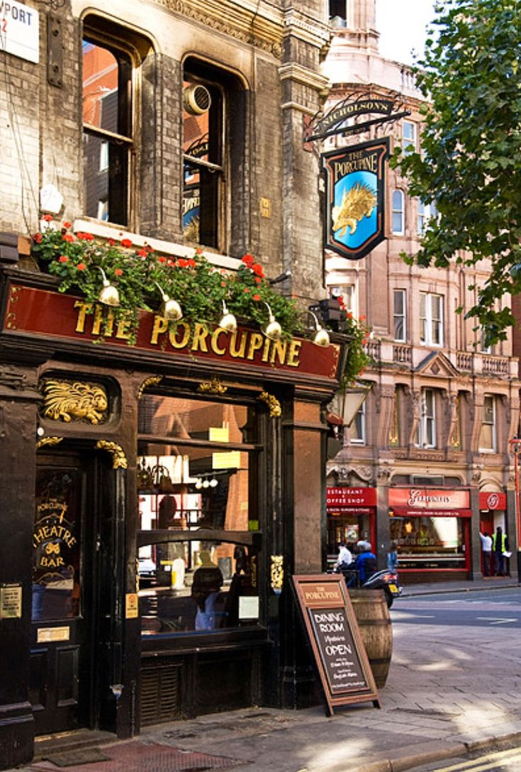 I think we could find some birds in Hyde Park if we had a pint or two here first. The Porcupine Pub - London, England