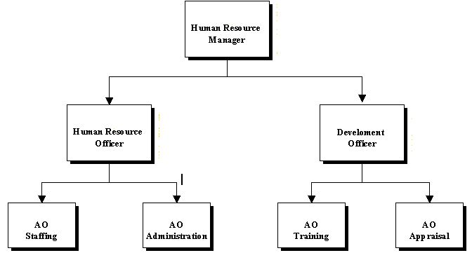 Image result for human resources department structure