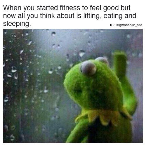 When You Started Fitness To Feel Good https://www.musclesaurus.com/bodybuilding/
