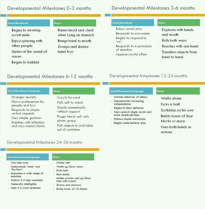 software development milestones