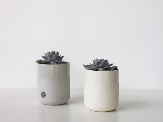 """The Vessel Gift Pack via Grit Ceramics """"It's a way to say thank you""""  This beautiful gift line includes two indoor plants and two small pots.  They are both stylish and simple, perfect for that table top, office space or finish off that plant """"shelfie"""" you have always wanted."""