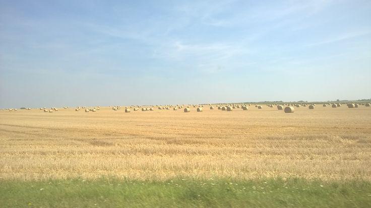 Somewhere in Poland