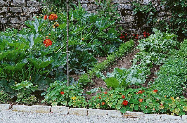 Cultiver son potager c'est bon pour la santé! Détente, exercice et produits frais : profitez des vertus du jardin, même en commençant petit.