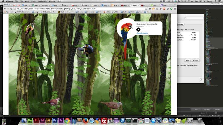 Los sonidos de nuestras aves: nueva sección de nuestro portal general SiB Colombia