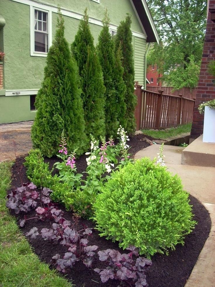 Image Result For Plant Ideas Next To House Foundation Landscaping Shrubs Privacy Landscaping Yard Landscaping