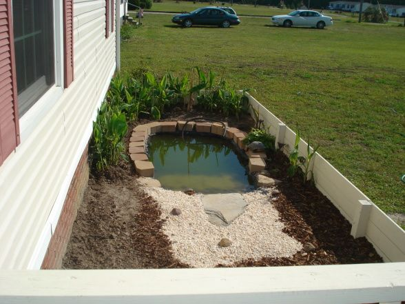 Turtle Pond This Is The New Home I Did For Our Turtle I Took About Two Weekends But I Had A