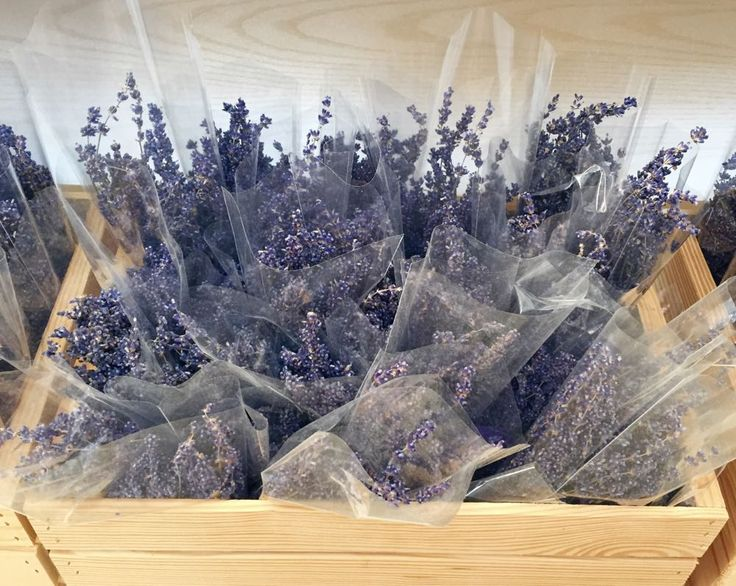 Bunches Of Harvested Lavender Wrapped In Cellophane