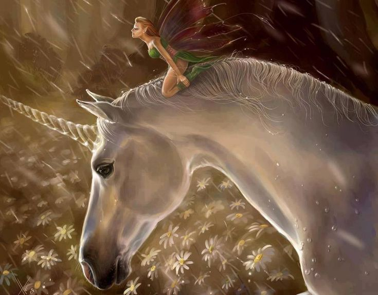 Fairy On Unicorn Fairies Creature Fantasy Art Horse Dragon