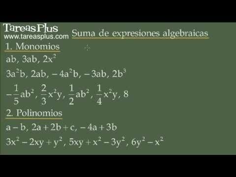 Suma de expresiones algebraicas (monomios y polinomios)