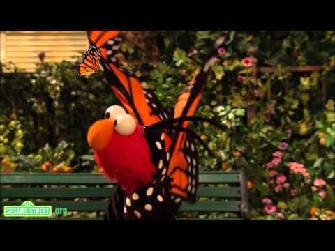 VID: Butterflies365: Raising awareness for Lafora Disease. #RareDisease Visit www.beckysdream.org & help!