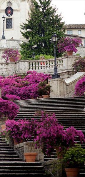 Rome Italy :: Scalinata della Trinità dei Monti [Spanish Steps] √ http://en.wikipedia.org/wiki/Spanish_Steps