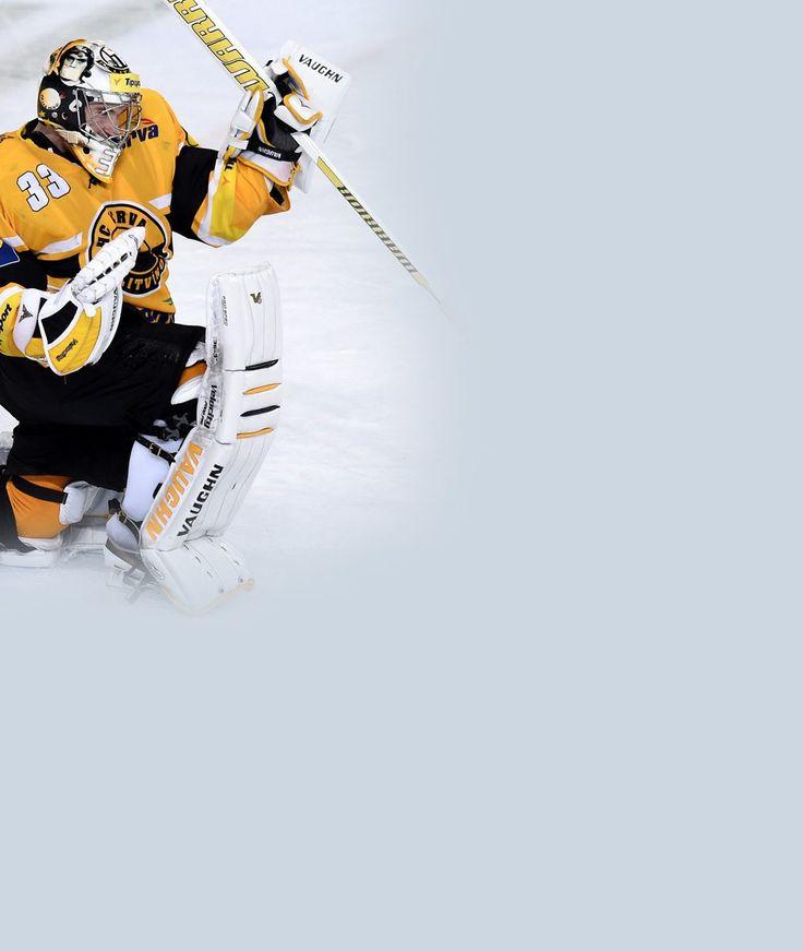 HC Litvinov Goalie  Pavel Francouz CZE  Extraliga  http://www.sport.cz/hokej/extraliga/clanek/662621-miluju-te-kricel-rozjareny-francouz-na-golmana-rucinskeho-zklamal-jsem-hlesl-ton.html